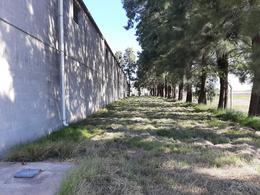Foto Galpón en Alquiler en  Roldan,  San Lorenzo  RUTA A012 ENTRE RUTA 9 Y RUTA 34. Km 50