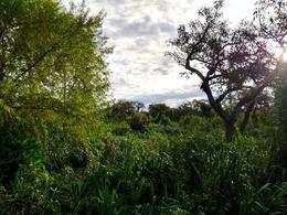 Foto Terreno en Venta en  Urion,  Zona Delta Tigre  Arroyo Urión