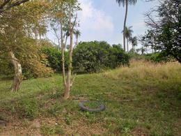 Foto Campo en Venta en  Bahía Negra ,  Alto Paraguay  Lagerenza, Palmar de las Islas