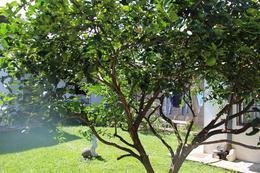 Foto Casa en Venta en  Tibas ,  San José  Tibas
