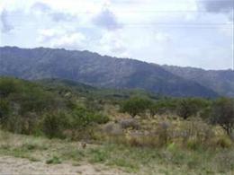 Foto Campo en Venta en  Cortaderas,  Chacabuco  Campo de 20 Has.