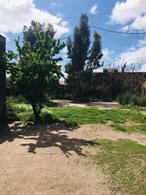 Foto Galpón en Alquiler en  Bahia Blanca ,  Interior Buenos Aires  IATALIA al 1200