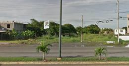 Foto Terreno en Renta en  Monte Alto,  Altamira  Terreno en Renta sobre Carretera Tampico-Mante en Monte Alto, Altamira