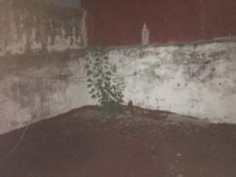 Foto PH en Venta en  Parque Avellaneda ,  Capital Federal  Homero al 800