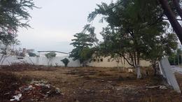 Foto Terreno en Renta en  Ciudad Mante Centro,  El Mante  Terreno Comercial en Renta en Zona Centro de Cd. Mante