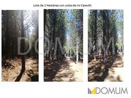 Foto Terreno en Venta en  Meliquina,  Lacar  Río Caleufu 1