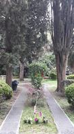Foto Departamento en Venta en  Almagro ,  Capital Federal  Av. Rivadavia 4509