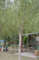 Foto Casa en Venta en  Balneario Viejo,  General Belgrano  Calle al 600