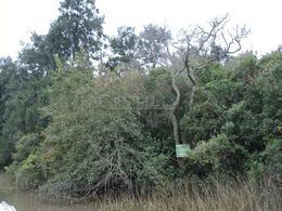 Foto thumbnail Terreno en Venta en  Sabalos,  Zona Delta Tigre  ARROYO SABALOS