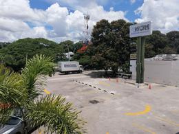 Foto Local en Renta en  Mérida ,  Yucatán  Local De 137 m2 Con Terraza De 80 m2 En Planta Alta Av Prolongación Paseo Montejo