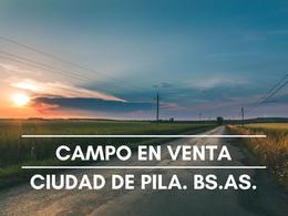 Foto Campo en Venta en  Pila,  Pila  Ruta  al 100
