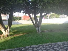 Foto Terreno en Venta en  Fraccionamiento Kloster Sumiya,  Jiutepec  Terreno Kloster Sumiya, Jiutepec