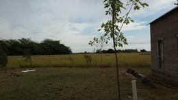 Foto Campo en Venta en  Villa Espil,  San Andres De Giles  Ruta 7 Km 92.6