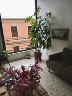 Foto Departamento en Venta en  Barranco,  Lima  Barranco