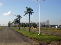 Foto Terreno en Venta en  Roldan,  San Lorenzo  Punta Chacra - Roldan