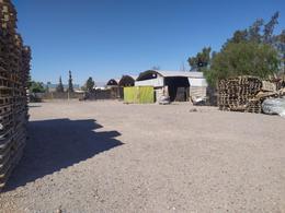 Foto Galpón en Alquiler en  Rawson ,  San Juan  Ruta 40 y Calle 5