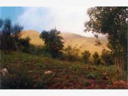 Foto Terreno en Venta en  La Falda,  Punilla  CONFIDENCIAL