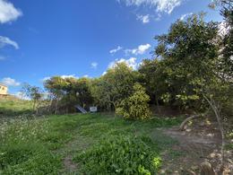 Foto Terreno en Venta en  Punta Piedras,  Manantiales  Altos de Punta Piedra