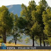 Foto Terreno en Venta en  Tafi Del Valle,  Tafi Del Valle  Ruta 307