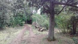 Foto Chacra en Venta en  Epuyen,  Cushamen  Ruta 70, Epuyen