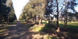 Foto Terreno en Venta en  Roldan,  San Lorenzo  Fiambala  900