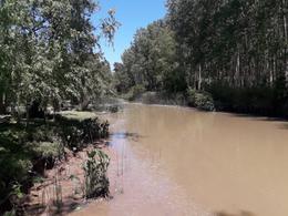 Foto Terreno en Venta en  Torito,  Zona Delta Tigre  Torito y espera