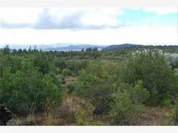 Foto Terreno en Venta en  San Carlos De Bariloche,  Bariloche  Terreno 8 has.