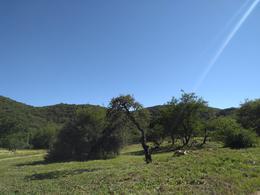 Foto Departamento en Venta en  Potrerillo de la Larreta,  Alta Gracia  Potrerillo de Larreta - Lote 1 P 400