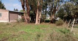 Foto Terreno en Venta en  La Plata ,  G.B.A. Zona Sur  187 entre 518 y 519