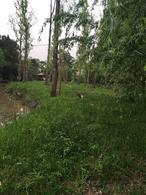Foto Terreno en Venta en  Arroyon,  Zona Delta Tigre  Arroyo Arroyon