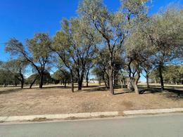 Foto Terreno en Venta en  Valle del Golf,  Malagueño  Lote con fondo Golf , sobre calle de asfalto *Valle del Golf