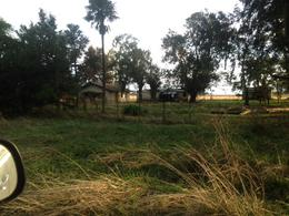 Foto Campo en Venta en  Las Flores ,  Interior Buenos Aires  A 800m de R3 y a 3km de Las Flores