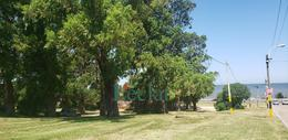 Foto Oficina en Alquiler en  Buceo ,  Montevideo  Tomas Basañez al 1211