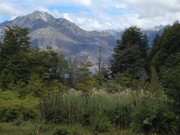 Foto Terreno en Venta en  El Hoyo,  Cushamen  Chacra en Epuyen, camino al Hoyo, Cushamen, Chubut