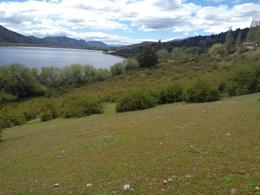 Foto Terreno en Venta en  Cholila,  Cushamen  Lago Pellegrini
