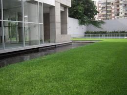 Foto thumbnail Departamento en Alquiler en  Palermo ,  Capital Federal   Guatemala  4550