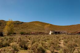Foto Terreno en Venta en  Tafi Del Valle ,  Tucumán  Costa 1, Tafi del Valle