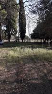Foto Campo en Venta en  Bowen,  General Alvear  Calle 16 A