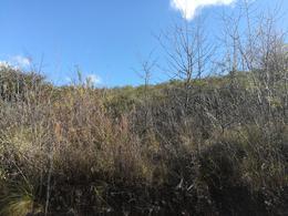 Foto Terreno en Venta en  Valle Hermoso,  Punilla  santa teresa al 2000
