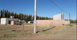 Foto Terreno en Venta en  Capital ,  Neuquen  Chascomús al 13000