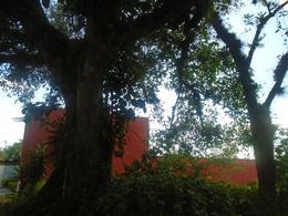 Foto Terreno en Venta en  Congregacion La Orduña,  Coatepec  AMPLIO TERRENO LIBRAMIENTO XALAPA COATEPEC