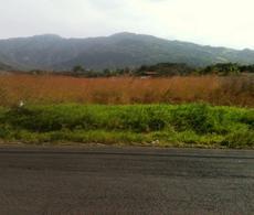 Foto Terreno en Venta en  Pozos,  Santa Ana  Lote para uso resindencial el Lindora