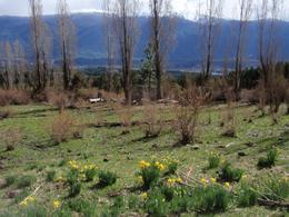 Foto Chacra en Venta en  Las Golondrinas,  Cushamen  Las Golondrinas