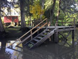 Foto Casa en Venta en  Toro,  Zona Delta Tigre  Toro Rancho Aparte