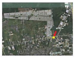 Foto Local en Renta en  Othón P. Blanco ,  Quintana Roo  PLAZA SANTA MONICA (LAS AMERICAS)