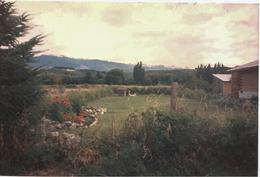 Foto Chacra en Venta en  El Manso,  Bariloche  RR1147