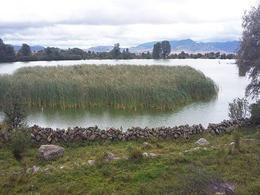 Foto Terreno en Venta en  Amealco de Bonfil ,  Querétaro  Rancho escriturado, a 25 min de San Juan del Río Qro.
