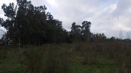 Foto Terreno en Venta en  Villa Elvira,  La Plata  641 Y 16