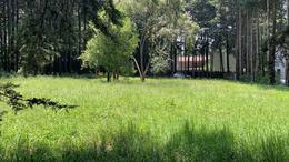 Foto Terreno en Venta en  Ex-hacienda Jajalpa,  Ocoyoacac  Hacienda Jajalpa