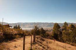Foto Terreno en Venta en  Tafi Del Valle ,  Tucumán  La  Loma de la Ovejeria